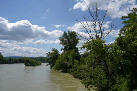 Overflowing river Rhine on the border between Germany and Switzerland. High water is caused by heavy rains in July 2021. The river banks and the vegetation are flooded with dirty muddy water.