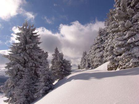 Winter in Ciucas Mountains: snow, tree, sky Stock Photo - 604954