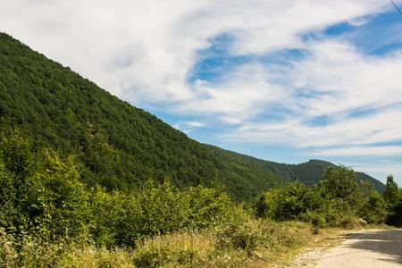 carpathians: Carpathians