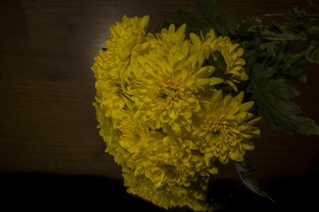 yellow: Yellow chrysanthemum Stock Photo