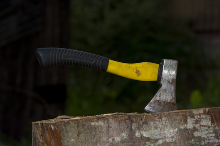 Axe with the shaft in a  wood.