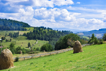 distinctive: Panoramic view over Carpathian Mountains , Romania in a  beautiful summer day Stock Photo