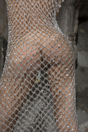 Young girl posing in a silver fishnet dress 免版税图像