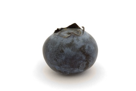 single blueberry isolated on a white background