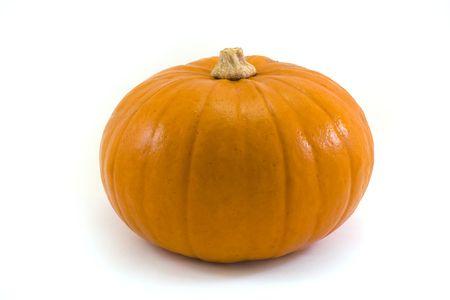 single pumpkin on a white background