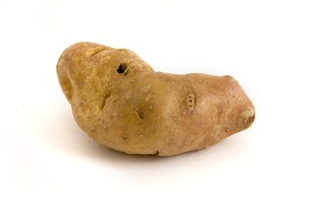 Single misshapen potato isolated over white Stock Photo