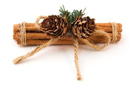 cinnamon stick: Festive cinnamon stick over white