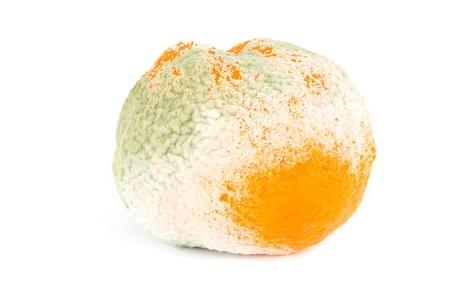Moldy orange isolated over white Stock Photo