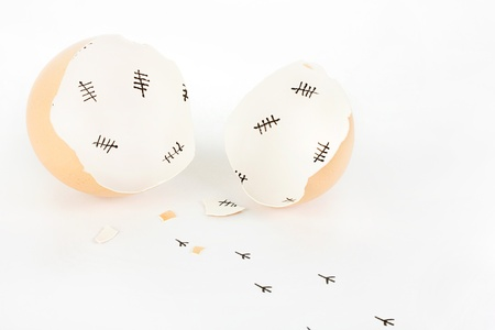 escaped: Broken egg shell with tally marks inside and chick footprints on white