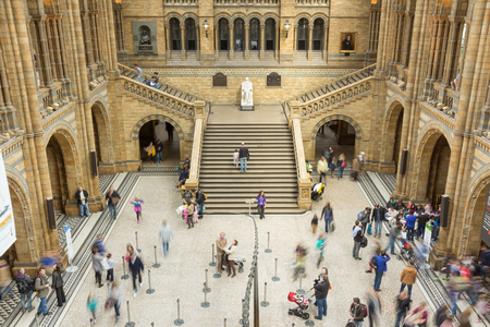 LONDON, UK - APRIL 28, 2013: People in the main hall at Londons Natural History Museum. With over 70 million specimens on display it is one of Londons most popular visitor attractions.