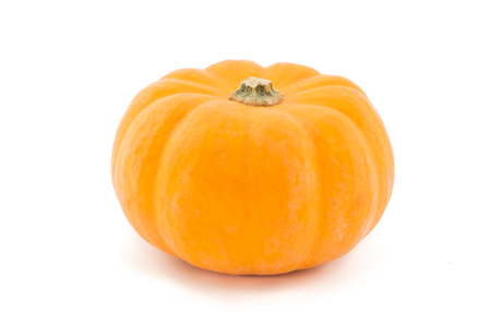 A single pumpkin isolated on a white background.