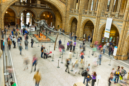 LONDON, UK - APRIL 28 2013: Visitors in the main entrance hall at Londons  Natural History Museum. One of the Capitals most popular tourist attractions in April, 2013. Editorial
