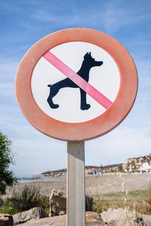 Aucun chien ne signe sur une plage. Banque d'images - 79878812