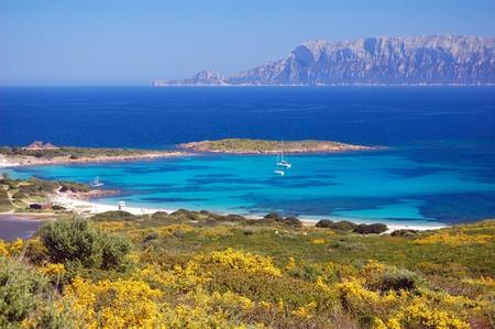 Sardinian Bay - Gallura