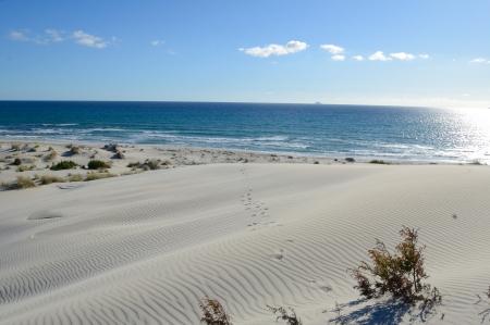 Is Arenas Biancas Beach