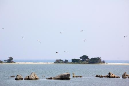 landscape of San Teodoro Pond (Sardinia)
