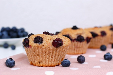 Blueberry muffins on the white and pink background, front view Reklamní fotografie