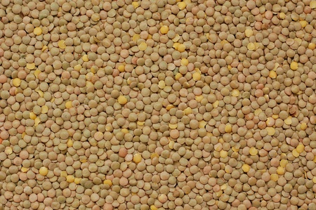 coeliac: Brown lentils background overhead view