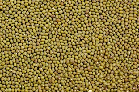 coeliac: Mung bean background green black