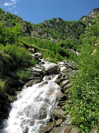 mountain streem making ist way through wooded hills in switzerland