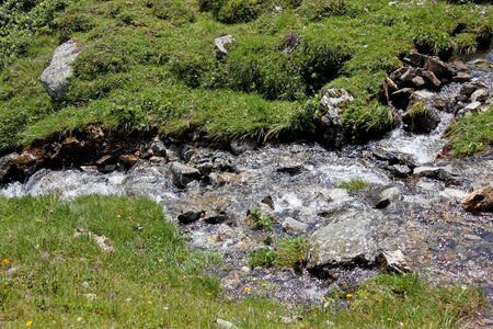 mountain stream in the swiss alps in summer