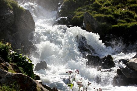 Torrential river in the swiss alps in summer