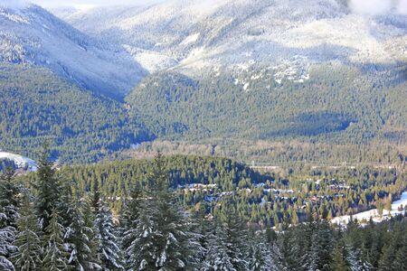 snow-covered forests in whistler Stock Photo