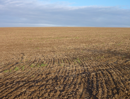 ploughed field: Empty ploughed field with brown soil