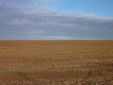 ploughed: Empty ploughed field with brown soil