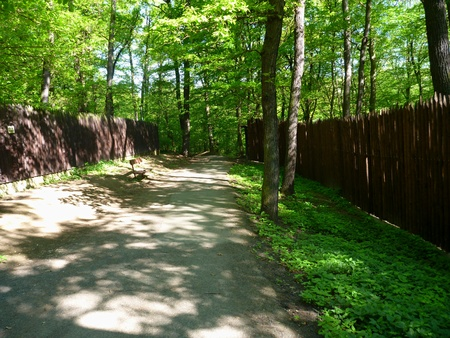 soli: a high brown wooden fence in a forest
