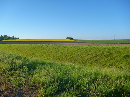 central european: central european cultivated landscape with green fields