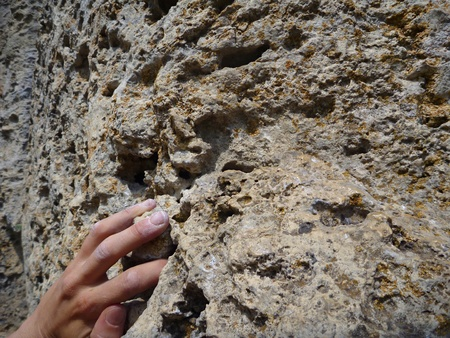 rappel: a climbers hamd on a limestone rock