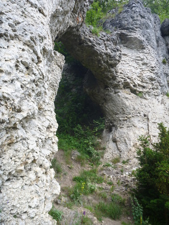 stone arch: a stone arch on a limestone rock in germany