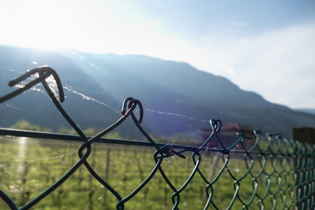 a detai lof a fence wit a spoder web Stock Photo