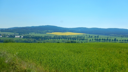 panorama of a czech agricultural landscape in summer