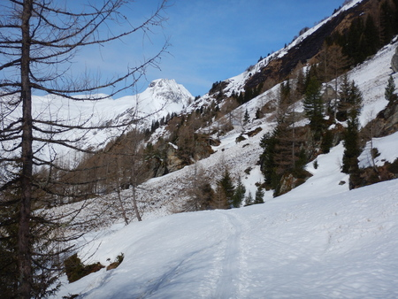 beautiful skitouring day at grossvenediger in alps in austria