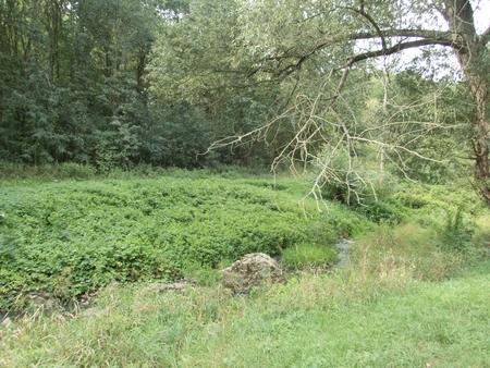 a small stream in divoka sarka park in prague in czechia