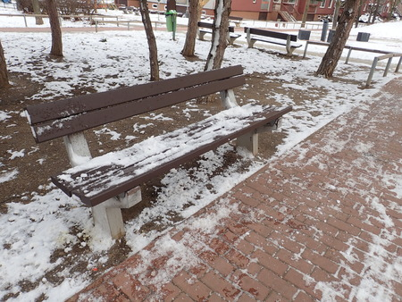 a winter season with snow in an urban park