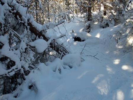 beautiful winter lanscape adventure skitouring in the alps Stockfoto