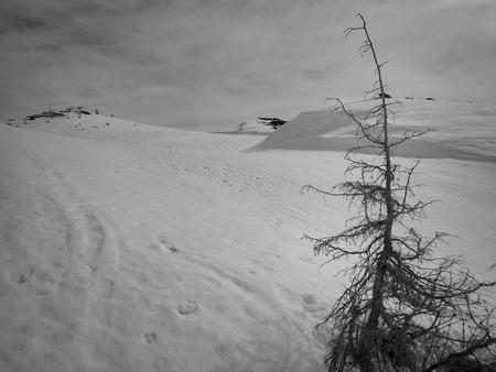 a beautiful winter skiins season in sar planina mountains in macedonia