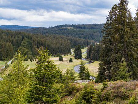 beautiful green meadow in sumava natural park in czechia