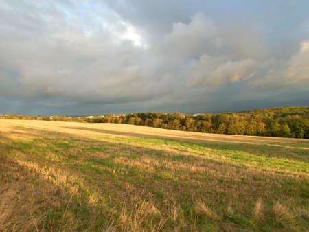 beautiful sunny autumn sunset on a meadow