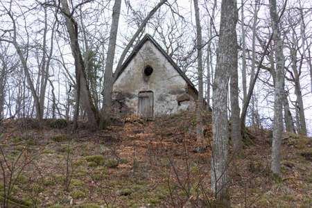 an old abandoned ruined house in a park Foto de archivo