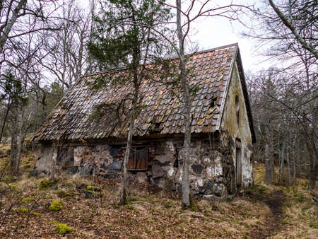 an old abandoned ruined house in a park