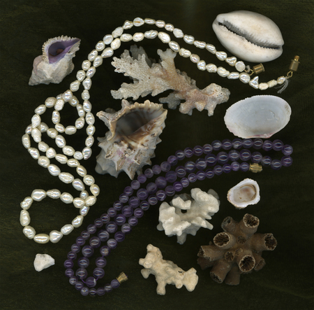perls: Shell in frame of pearls, corals and amethysts