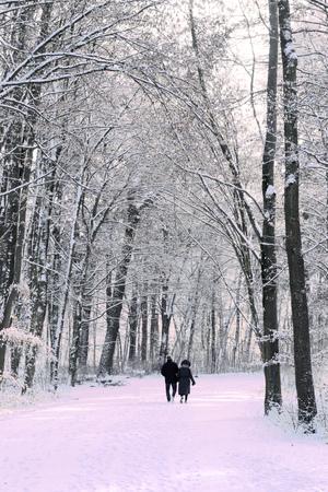 A couple walking in park in winter.