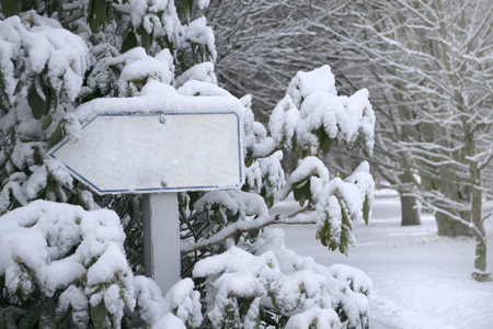 Blank sign in a park snow covered.