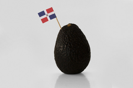 Isolated avocado with Dominican Republic flag.