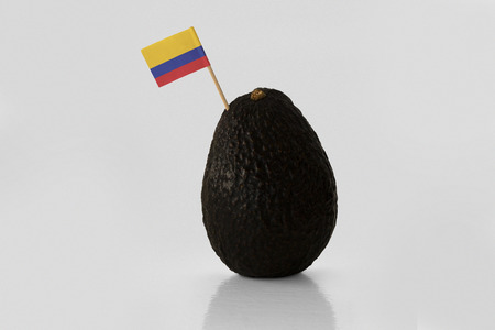 Isolated avocado with Colombian flag. Imagens