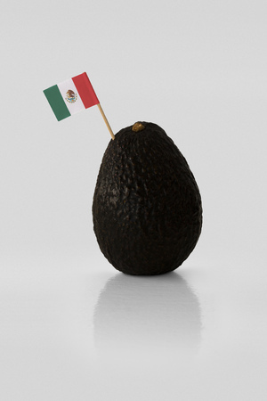 Isolated avocado with Mexican flag.